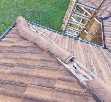 Roof Repairs & Maintenance